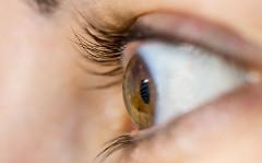 Opuch papily zrakového nervu