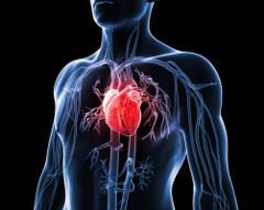 aneuryzma srdca