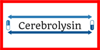 Cerebrolysin